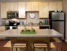 Kitchen Appliances Repair Maple Ridge